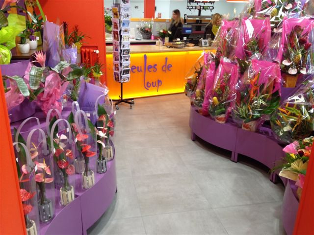 Meubles pour fleuriste