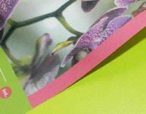 Papier peint texture